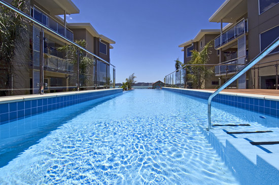 Edgewater Palms Apartments : Infinity Pool