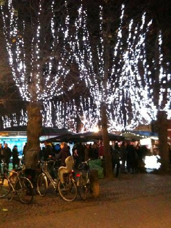 Montovani Hotel: the ice rink. Xmas market
