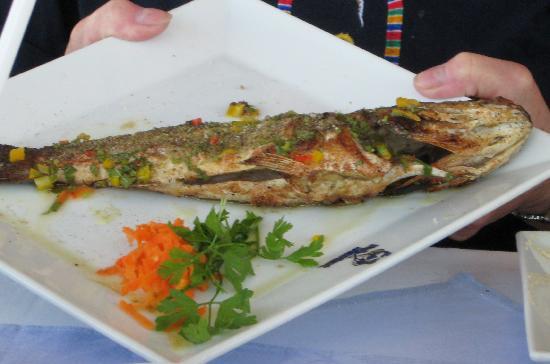 Fish Market: Sea Bass stuffed with garlic dressing