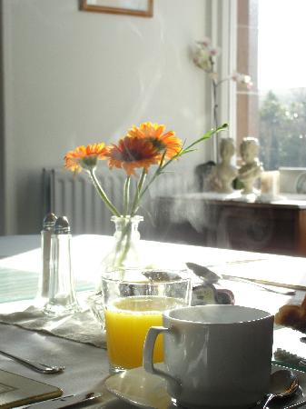 Marsule Bed and Breakfast: Our breakfast room is south faceing and gets loads of sunshine in the morning