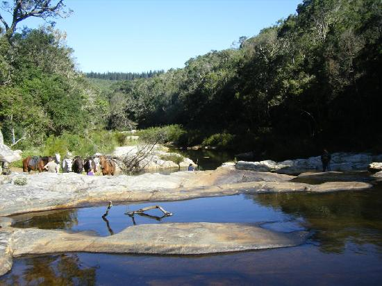 Garden Route Horse Trails: relaxing at the waterfall