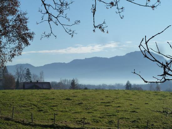 Gasthof zum Stern: Alpenblick