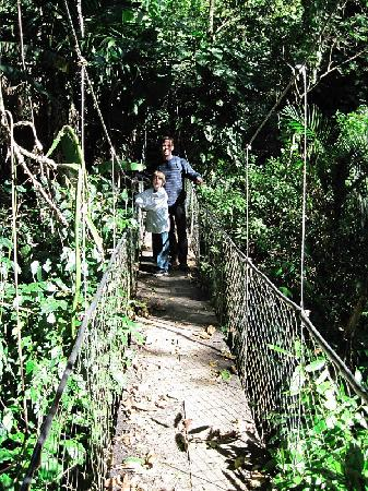 Reserva Natural Atitlan: One of the suspension bridges