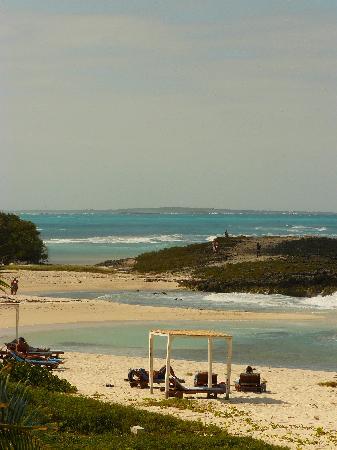 Melia Buenavista: plage 2