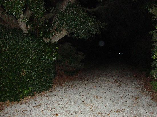 Beaufort Ghost Walk : Hammock house , alley site where creek went.  Orb also lights in background that look like car o