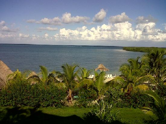 Turquoise Bay Dive & Beach Resort: THE VIEW FROM MY ROOM