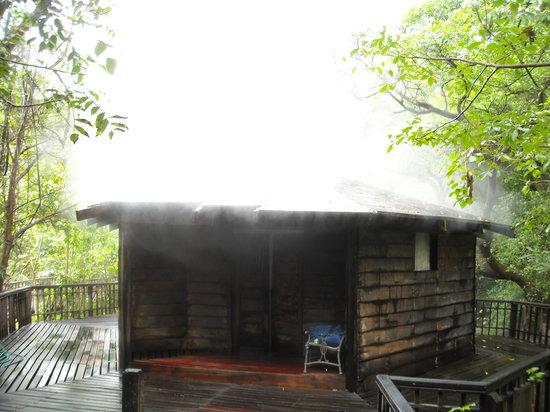 Hotel Borinquen Mountain Resort: hot spring sauna