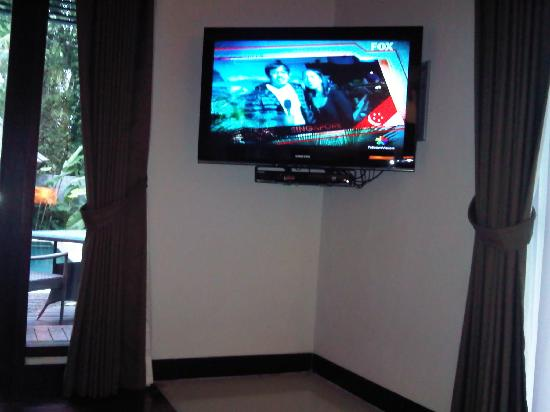 The Samaya Bali Ubud: TV in the bedroom