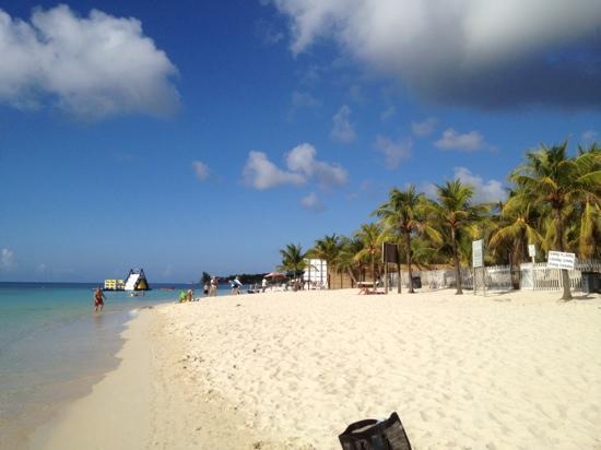 West bay roatan picture of mayan princess beach dive for Roatan dive resort