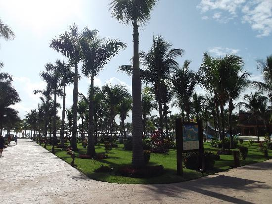 Barcelo Maya Colonial: Beautiful palm trees and grounds