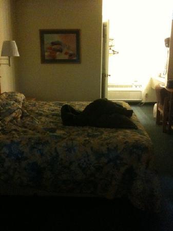 Rodeway Inn: chambre220