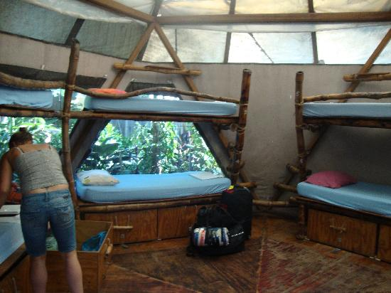 The Arts Factory Backpackers Lodge: Inside the Pentagon