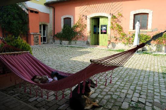Masseria Sant'Agapito: relax con il cane