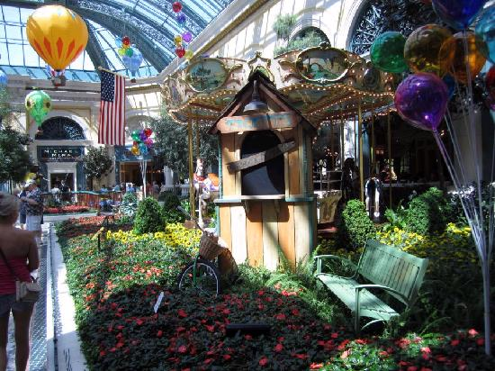 Gardens Picture Of Conservatory Botanical Gardens At