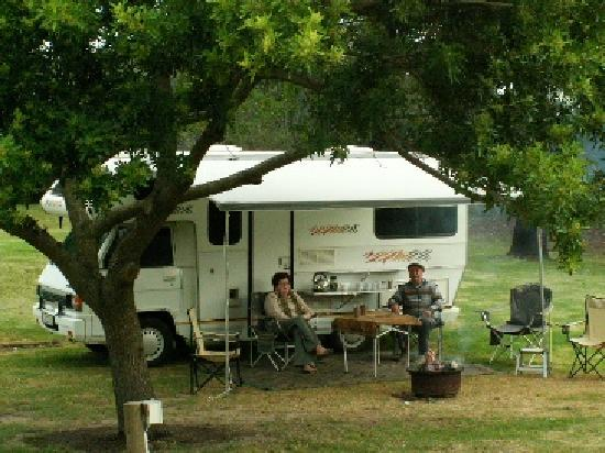 Harkerville Forest Lodge: Shady Campsites