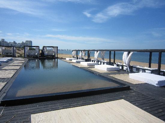 Serena Hotel Punta del Este: pool