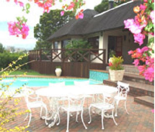 Summerhill Guest Farm: Swimming Pool