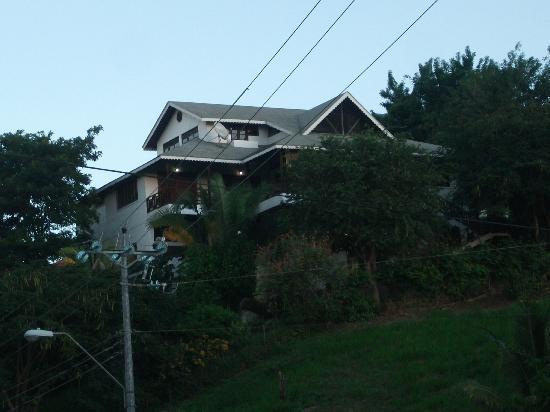 The Nest Tobago Apartments : Villa von der Strasse aus