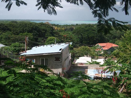 The Nest Tobago Apartments: Küche