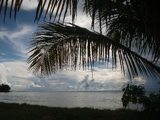 The Nest Tobago Apartments : Canoe Bay