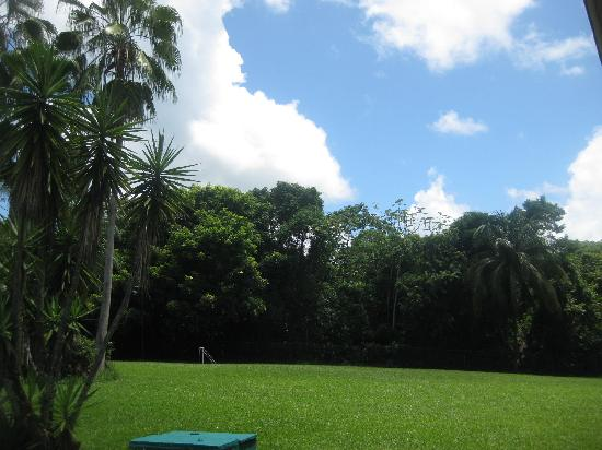 Hotel Mision Palenque: Jardines