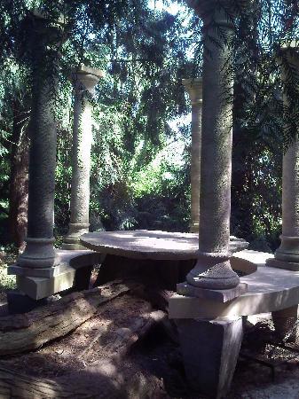 Chateau de Maubuisson: Un petit coin sous les arbres