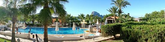 Apartments Petunia: Hotel Petunia Pool und Aussicht