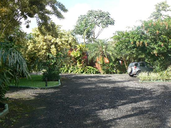 Arenal Paraiso Hotel Resort & Spa: Grounds of the hotel