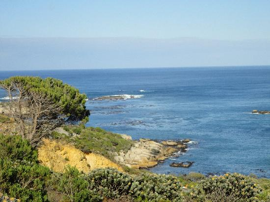 The Twelve Apostles Hotel and Spa: Ocean view from the hike