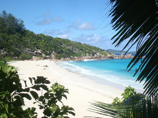 Nevis Ernesta La Digue Boat Excursions: Des paysages magnifiques à découvrir avec nous.