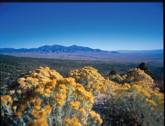 Great Basin National Park, NV: Scenics