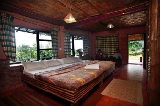 Wild Elephant Eco Friendly Resort : Mud Cottage