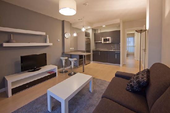Irenaz Vitoria Apartments : Vista general del Apartamento