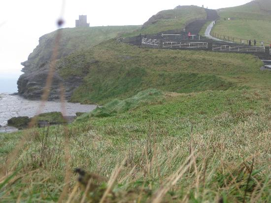 Carrygerry Country House: Cliffs of Moher