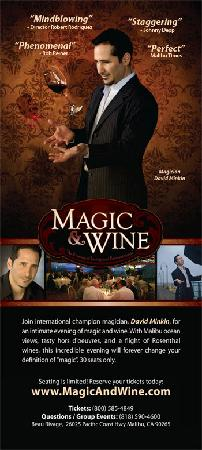Magic and Wine Tasting with David Minkin: Magic Show and Wine Tasting