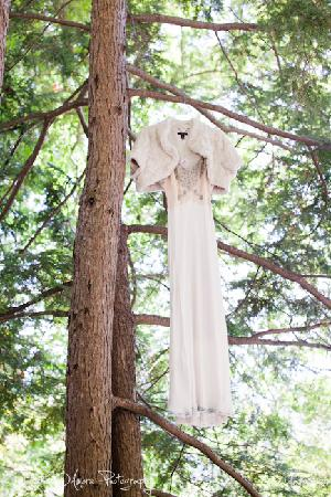 Asheville Swiss Chalets: I photographed my friends wedding dress haning outside of the Chalet