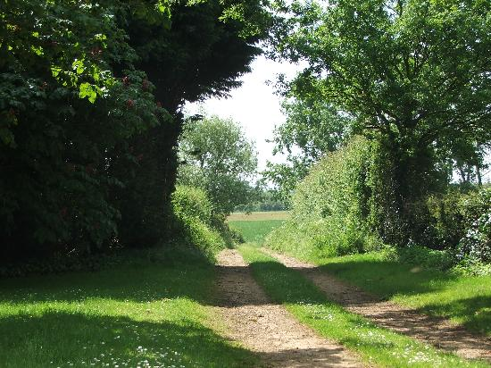 Culham, UK: Dusty Lane