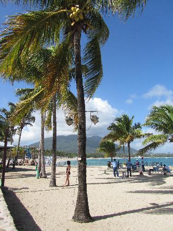 Grand Paradise Playa Dorada: Vendeurs sur la plage !!