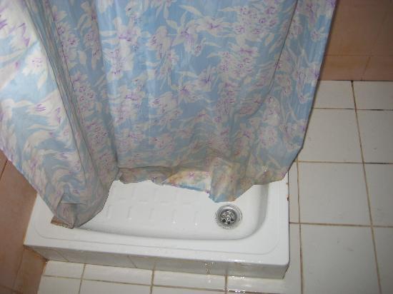 Shalimar Park Hotel: Shower  curtain