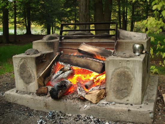 Mongaup Pond Campground: Campsite firepit