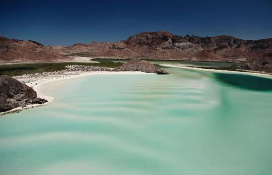 Glamping In California >> Mas que una bella playa - Picture of Isla Espiritu Santo, La Paz - TripAdvisor