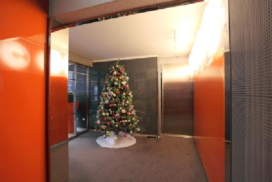 Design hotel f6 xmas tree entrance picture of design for Hotel design f6 geneva