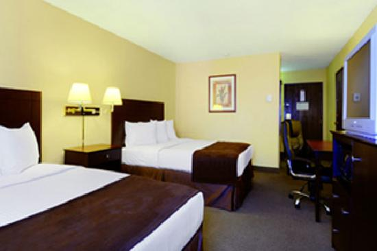 Best Western McCarran Inn: Best Western McCarran - Double Bed Guest Room