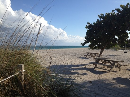 Dania Beach صورة فوتوغرافية