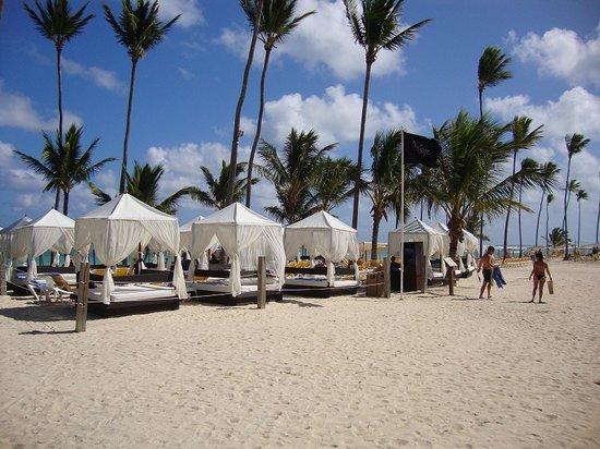 Ocean Blue & Sand: On the beach