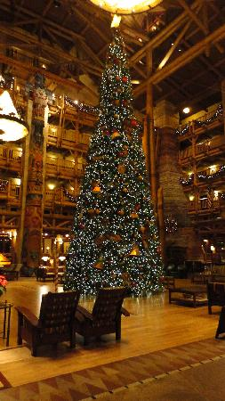Lobby Christmas Tree - Picture of