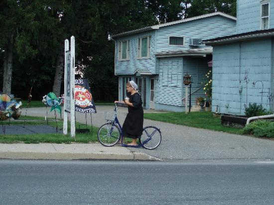 Lancaster County, เพนซิลเวเนีย: Amish Child on a Scooter
