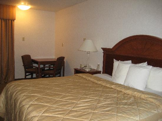 Quality Inn & Suites University: bed
