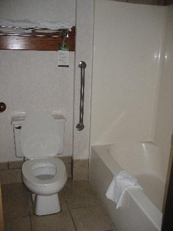 Quality Inn & Suites University : bathroom