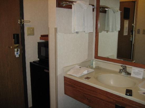 Quality Inn & Suites University : vanity